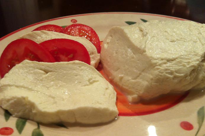 Homemade Mozzarella Cheese Recipe