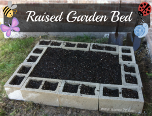 Springtime Garden and Backyard ideas!