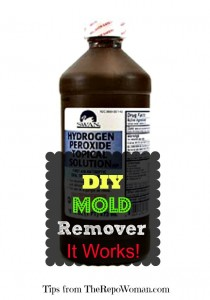DIY Mold Remover that Works!